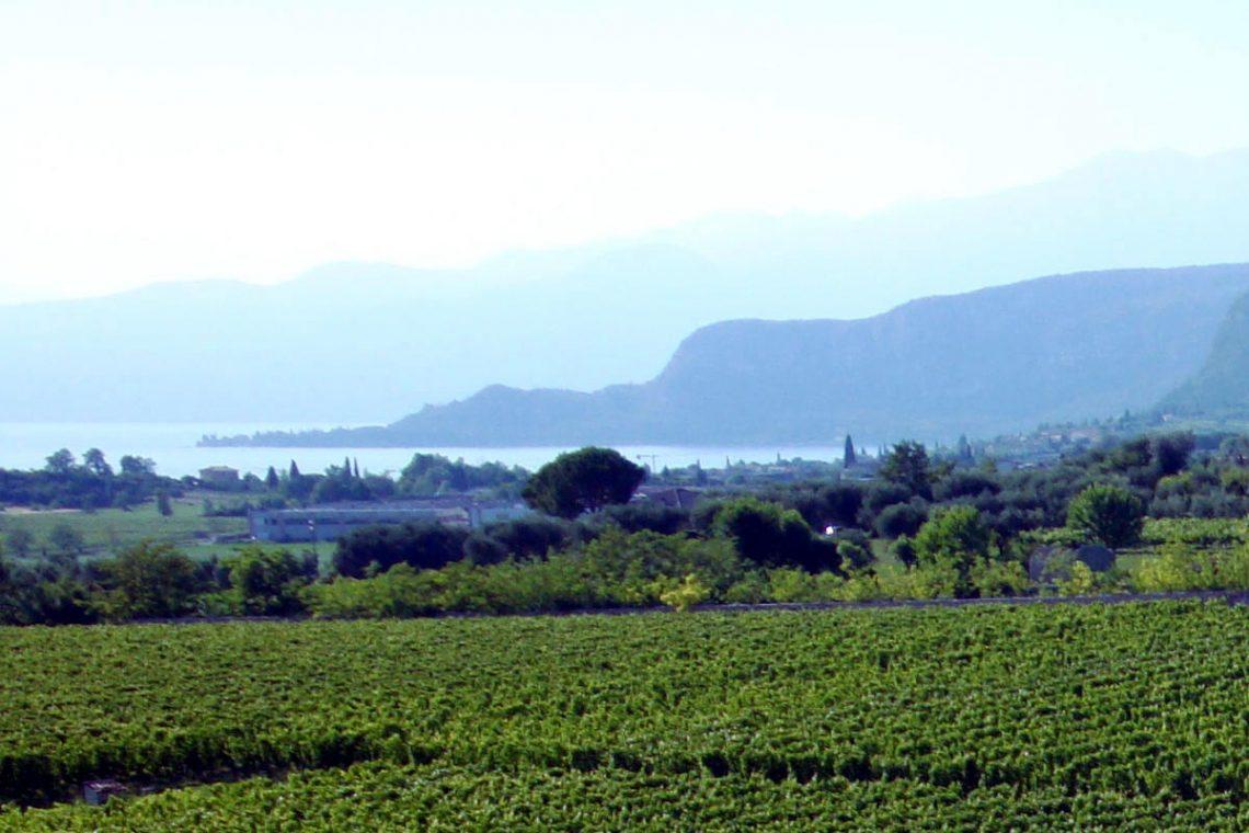 Weingut Bardolino zum Verkauf mit schönem Seeblick 01