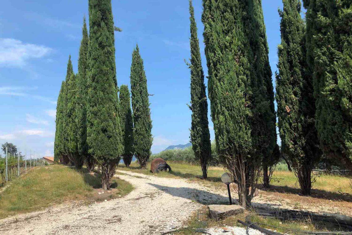 Baugrundstück Garda mit Seeblick 09