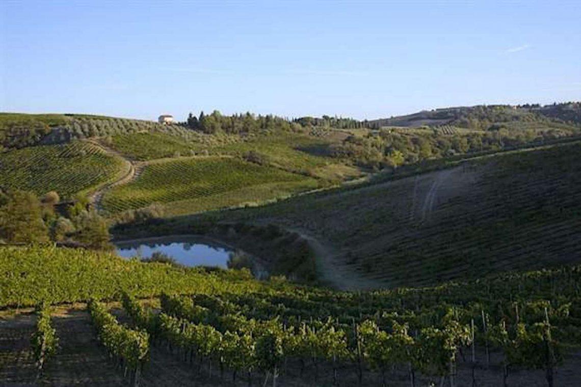 Weingut in Chianti zu verkaufen 02