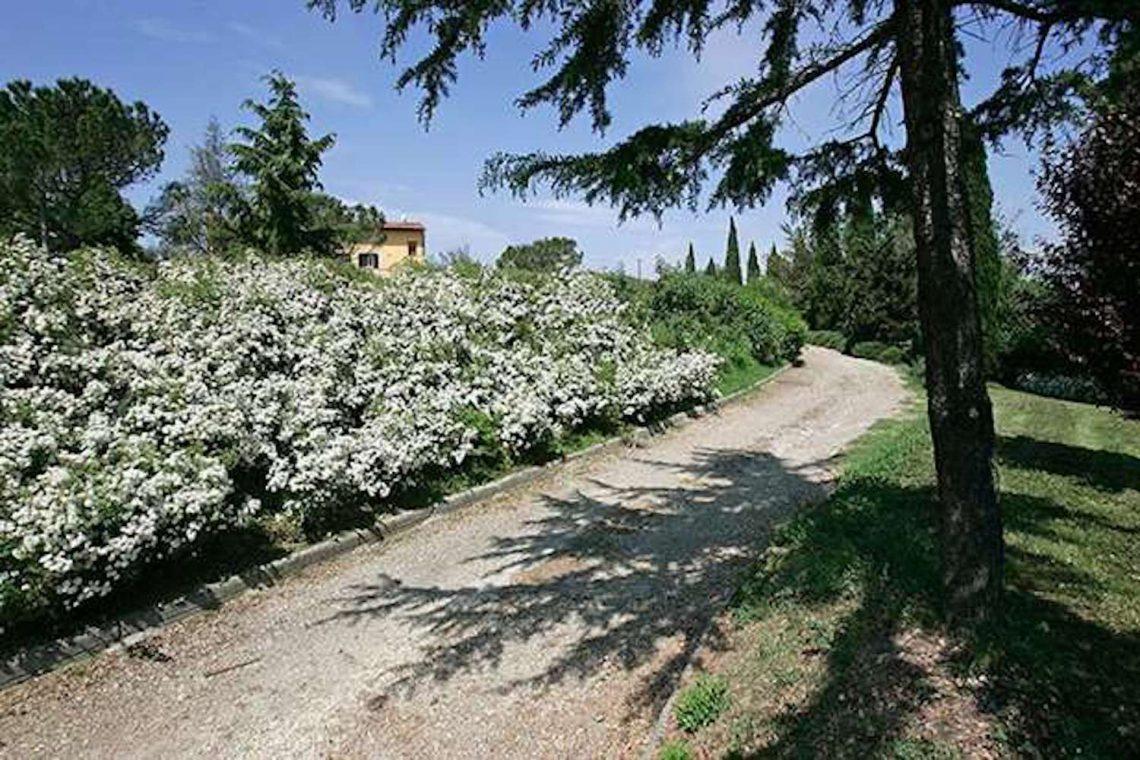 Weingut in Chianti zu verkaufen 08